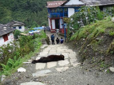Village de Tolka
