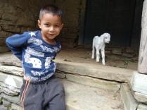 Jeune garçon et agneau