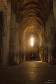 Abbaye de Valmagne - La Nef