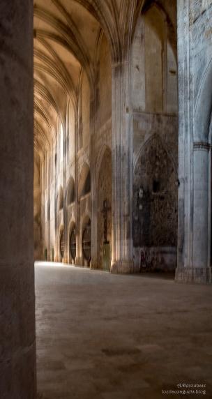 Abbaye de Valmagne .La nef et le chai
