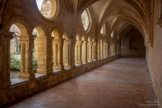 Abbaye de Valmagne . Le Cloître